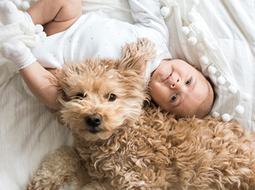 A baby and dog lying together, both looking at the camera.