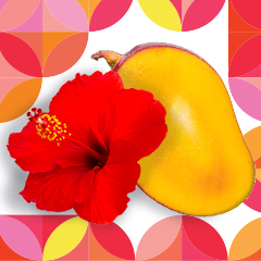 A cut mango and a hibiscus flower.